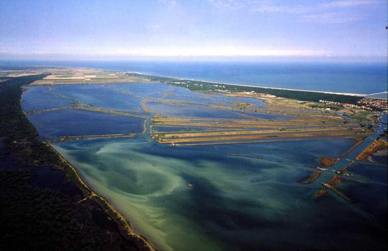 Un nuovo futuro per il Delta del Po. Il contributo delle filiere green e blue alla strategia per le aree interne